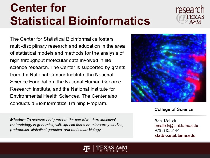 center_for_statistical_bioinformatics
