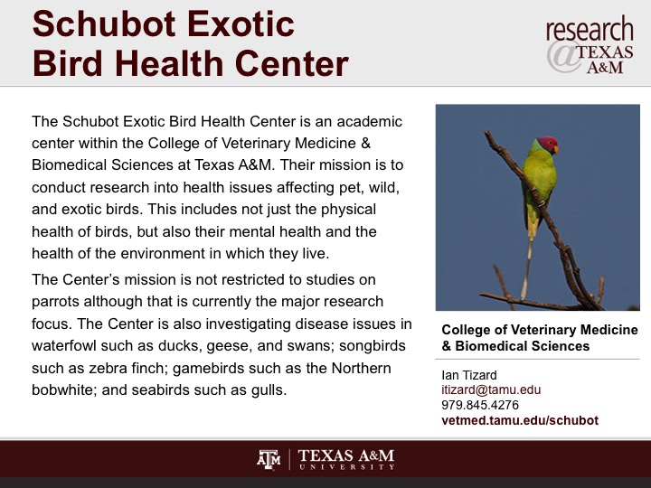 schubot_exotic_bird_health_center