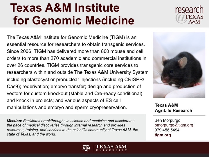 texas_a_and_m_institute_for_genomic_medicine