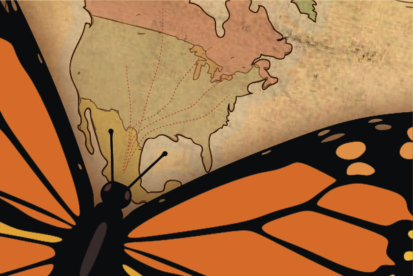 A Monarch butterfly set against a map of North America
