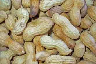 For peanuts: 1st genome sequence could enhance production in Texas
