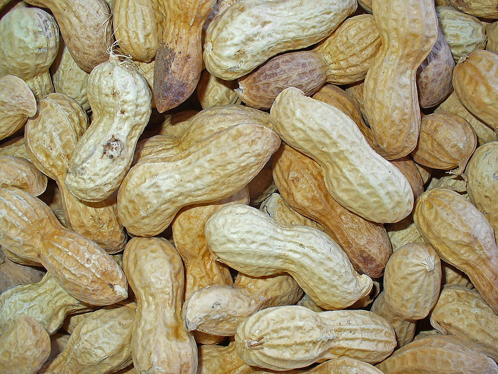many unshelled peanuts