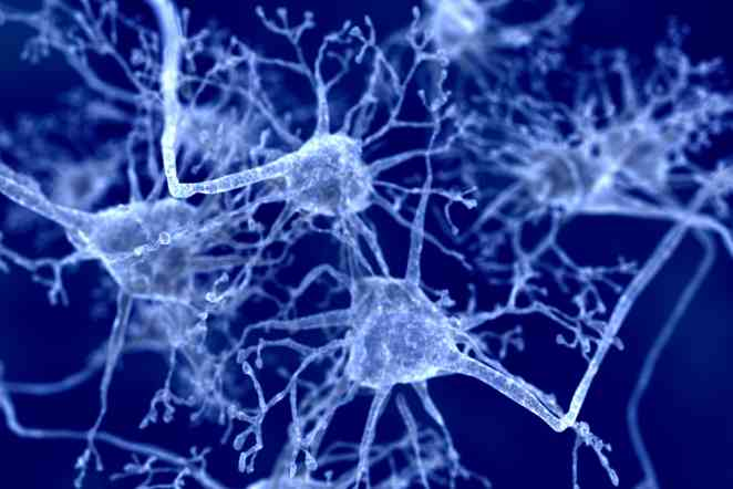 Parkinson's disease: Method will help clinicians to estimate age of onset