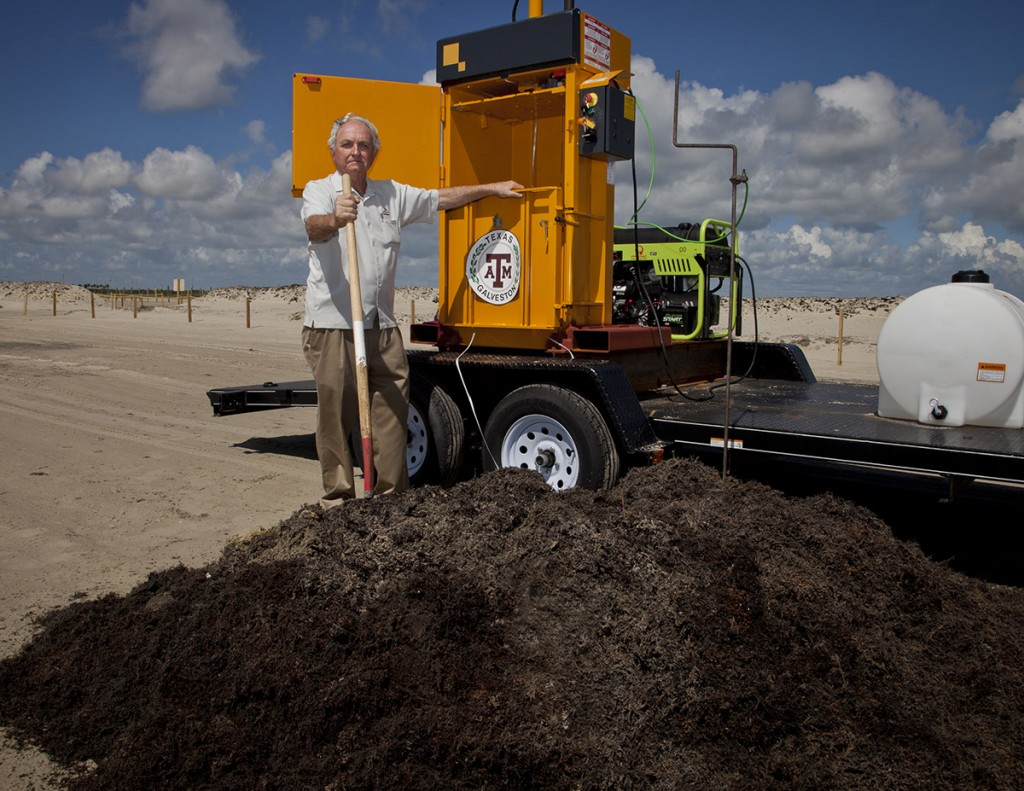 Man stands with shovel and bulldozer on a beach with a mound of seaweed