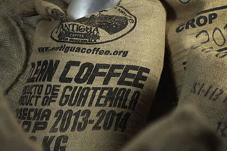 VIDEO: The end of premium coffee? Confronting a billion-dollar fungus