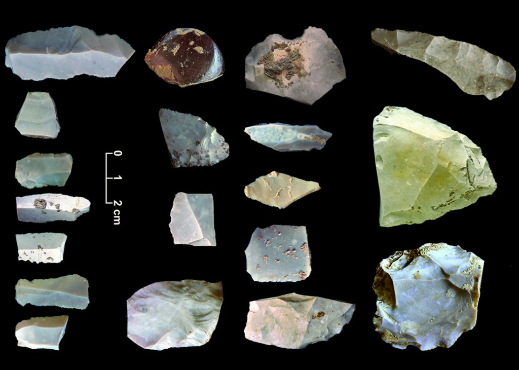 Artifacts recovered from the 15,000 year-old campsite at the Friedkin site near Austin, Texas. These artifacts include bifaces, blades, choppers and other tools used for many different tasks