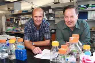 Learning how wounds heal could advance treatment of fibrotic disease