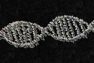 NIH-funded study will explore how genetics, environment affect health