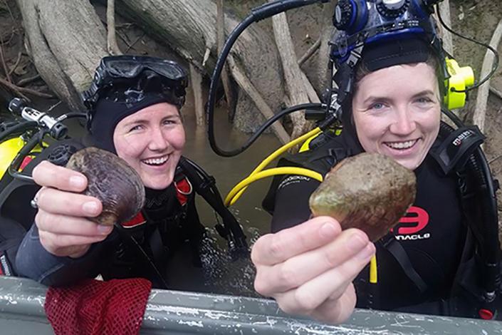 two women in SCUBA gear hold mussel shells