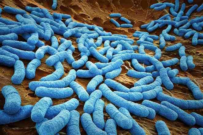 Ultraviolet light and copper coatings may help hospitals control infections
