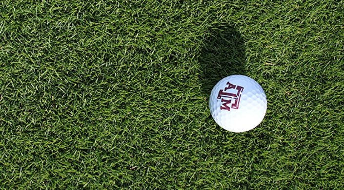 A golf ball on a putting green