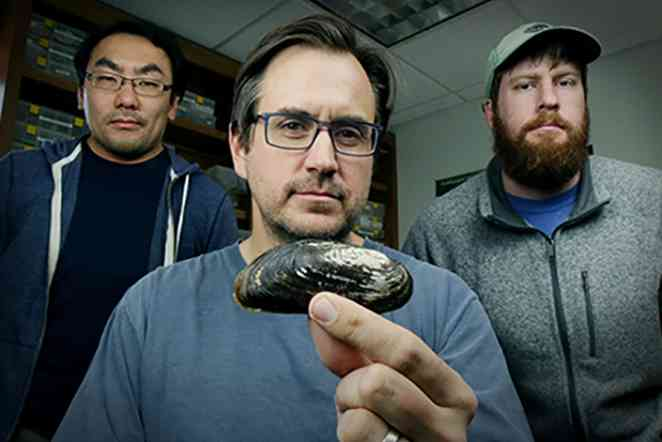 Texas hornshell mussel is in danger; A&M researchers want to know why