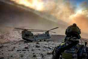 Component of turmeric is found effective in treating Gulf War illness