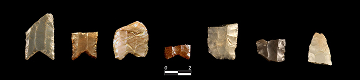 seven fluted spear points