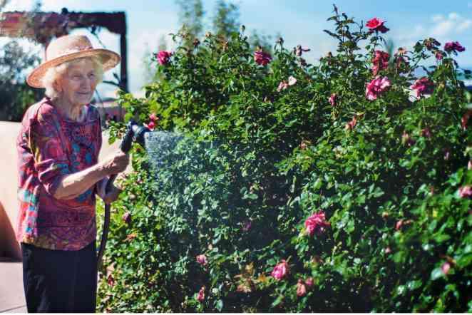 Award-winning paper by design prof details link between brain health, everyday gardening tasks