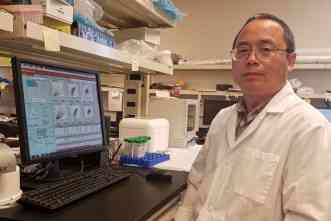 'Precision nutrition' may help prevent non-alcoholic fatty liver disease