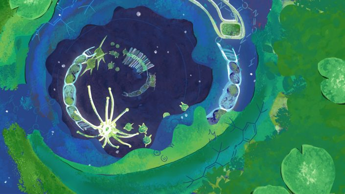 illustration of an algal bloom