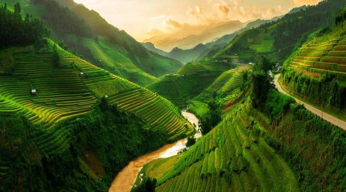 Terraced rice field landscape near Sapa in Vietnam.