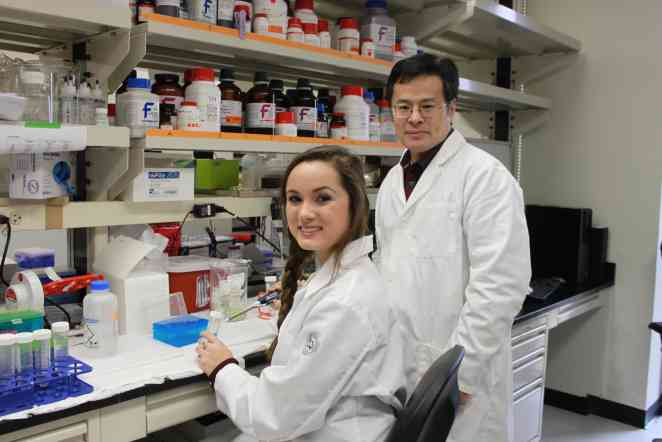 Researchers identify potential therapeutic target for diabetes