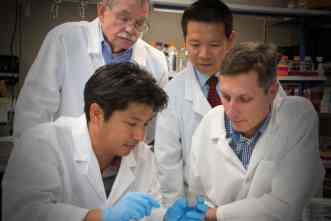 A&M leads study of inter-individual differences in chemical toxicity