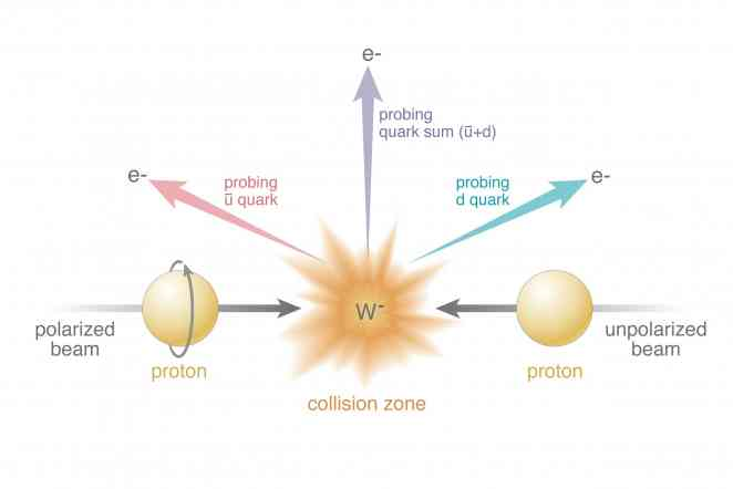 Spinning protons: 'Flavors' of antiquarks create different effects