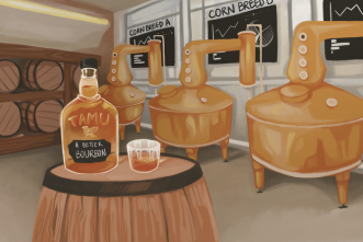 Better whiskey through science: Can selection of corn enhance taste?