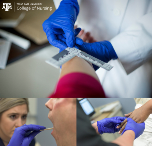 Center Of Excellence In Forensic Nursing Research Texas A M Inform Inspire Amaze