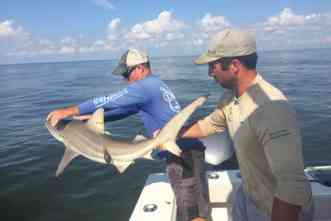 Save the shark: Can skilled anglers contribute to post-release survival?
