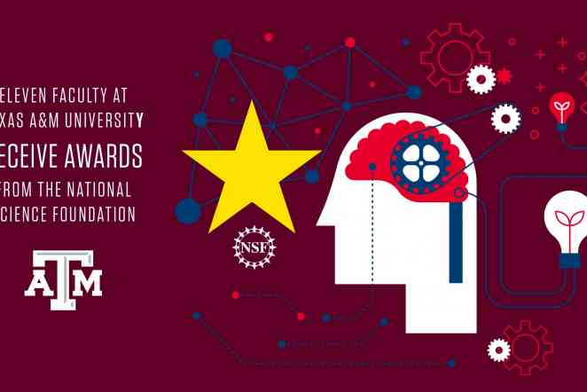 11 A&M faculty members earn NSF Early CAREER Awards for 2020