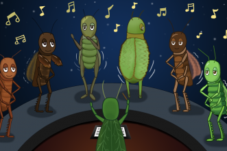 Insect songs are 'complex acts of communication,' entomologist says