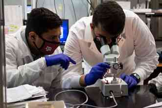 Lab develops organ-on-a-chip to test new drugs for sickle cell disease