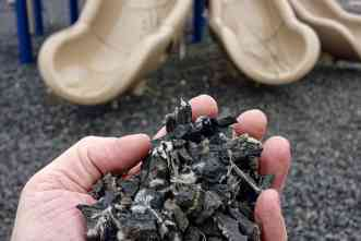 Study asks: How safe is crumb rubber used as mulch in some playgrounds?